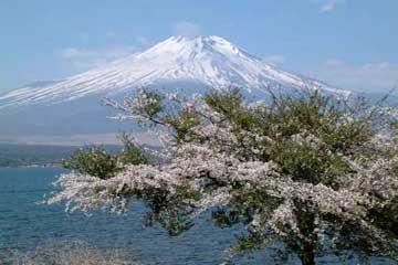 湖光山色富士山(多图)