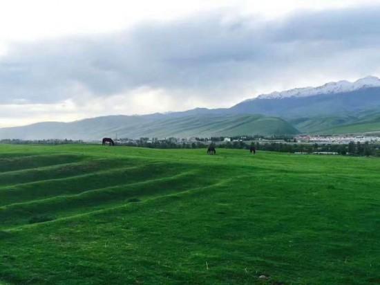 伊犁·那拉提草原,图七