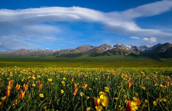 伊犁·那拉提草原,图十