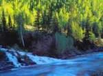 新疆和静县十大景点旅游攻略之四巩乃斯森林公园