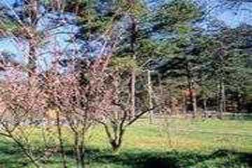 太鲁阁公园