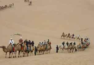 沙漠探险刺激与危险并存
