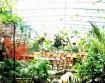 唐都生态园
