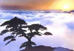 黄山最佳旅游时间推荐