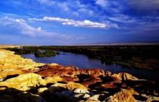 新疆阿勒泰青河县白桦公园