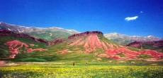 新疆阿图什夏牧场玉其塔什