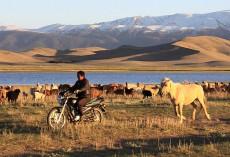 新疆哈密天山之夏狩猎场