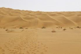 新疆库尔勒塔克拉玛干沙漠