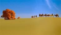 新疆喀什达瓦昆沙漠旅游风景区