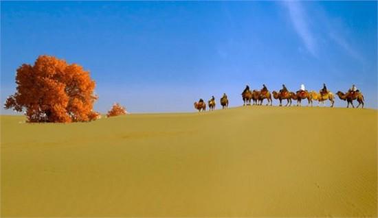 达瓦昆沙漠旅游风景区距喀什市100公里,与农三师42团相邻,始建于2000年,2001年获国家农业部批准为中国沙漠风光旅游风景区。景区内沙水相连,沙漠探险、骆驼探险、水上娱乐等旅游项目惊险而刺激,架子肉、烤包子等特色风味小吃令人流连忘返,辐射千年的柳树王、四十二团军垦文化、千年胡杨王、塔吉克阿巴提镇民俗风情、姜英爱国主义教育基地、西北小岗村等精品旅游线路让人全方位体验岳普湖独特的地域文化和风土人情。2012年2月16日,瓦昆沙漠旅游风景区被全国旅游景区质量等级评定委员会正式批准为国家4a级旅游风景区。
