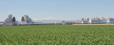 新疆石河子市高新农业技术示范园区