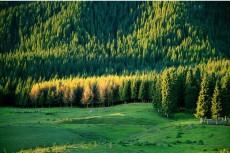 新疆石河子南山风景区