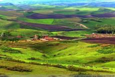新疆塔城吐尔加辽草原