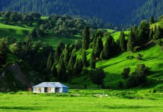 新疆乌鲁木齐南山牧场