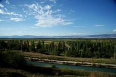 新疆伊犁巩乃斯河谷