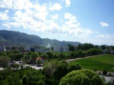 新疆伊犁尼勒克次生林度假村