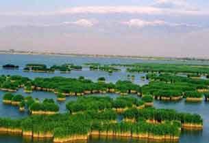 沙湖沙坡头:宁夏顶级旅游区三日游攻略