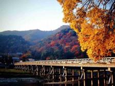 日本品质双温泉8日游