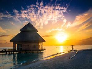 蓝梦巴厘岛纯玩 8日游