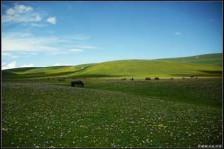 伊犁那拉提草原、吐鲁番、天山天池双飞6日游