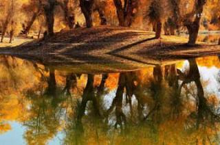 库尔勒、库车、沙雅胡杨林、阿拉尔、和田、卡湖、喀什南疆7日神秘之旅