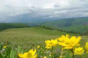 天池、吐鲁番、大峡谷、伊犁、喀纳斯、火车双卧9日游景点行程
