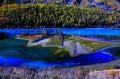 """""""神秘喀纳斯女神—摄影者的情人""""环北疆摄影采风团 (金秋)"""