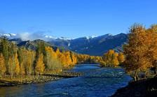 可可托海、喀纳斯、禾木、白哈巴、魔鬼城、北疆特色深度八日游