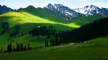 伊犁、喀纳斯特色深度全景、喀什双飞二十日游
