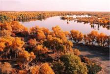 南疆民俗风情十三日游