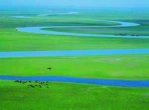 新疆有哪些著名河流